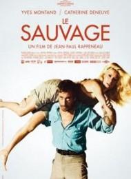 Regarder Le Sauvage en streaming complet